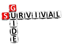 survive cra audit