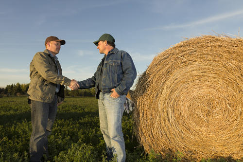 How Farming Can Help Businesses Save on Taxes